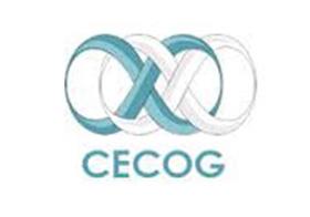 Cecog SpeedySpace